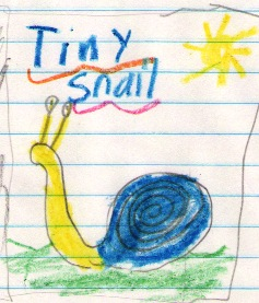 Madison's Tiny Snail